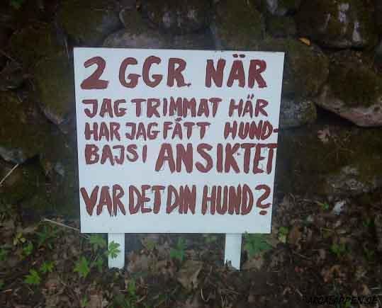 http://www.argalappen.se/imgs/lappar/1001/HundskitNorrkop-wicked_will.jpg
